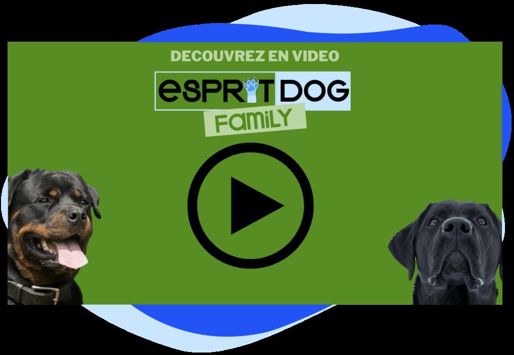 Esprit Dog Family