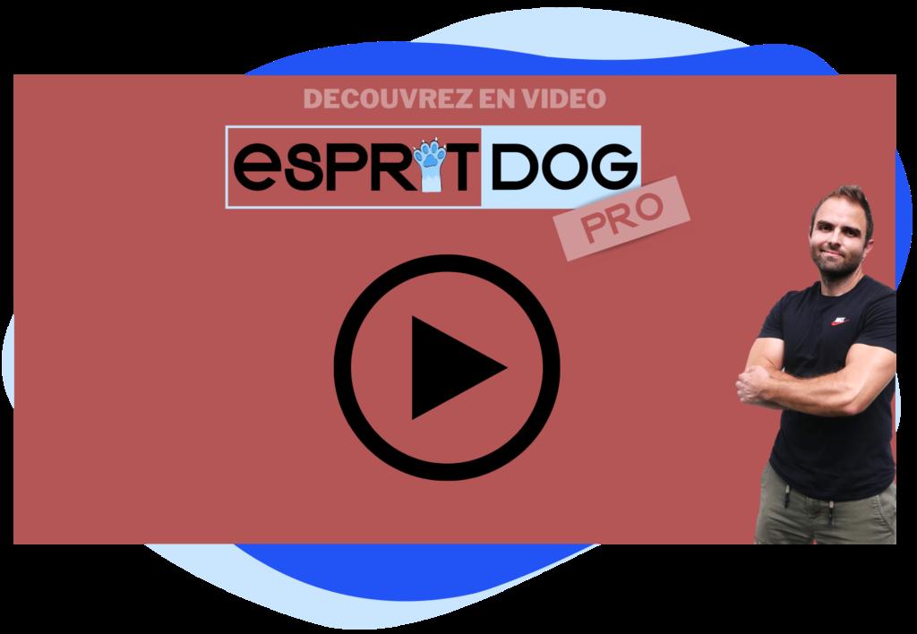 Esprit Dog Pro en ligne